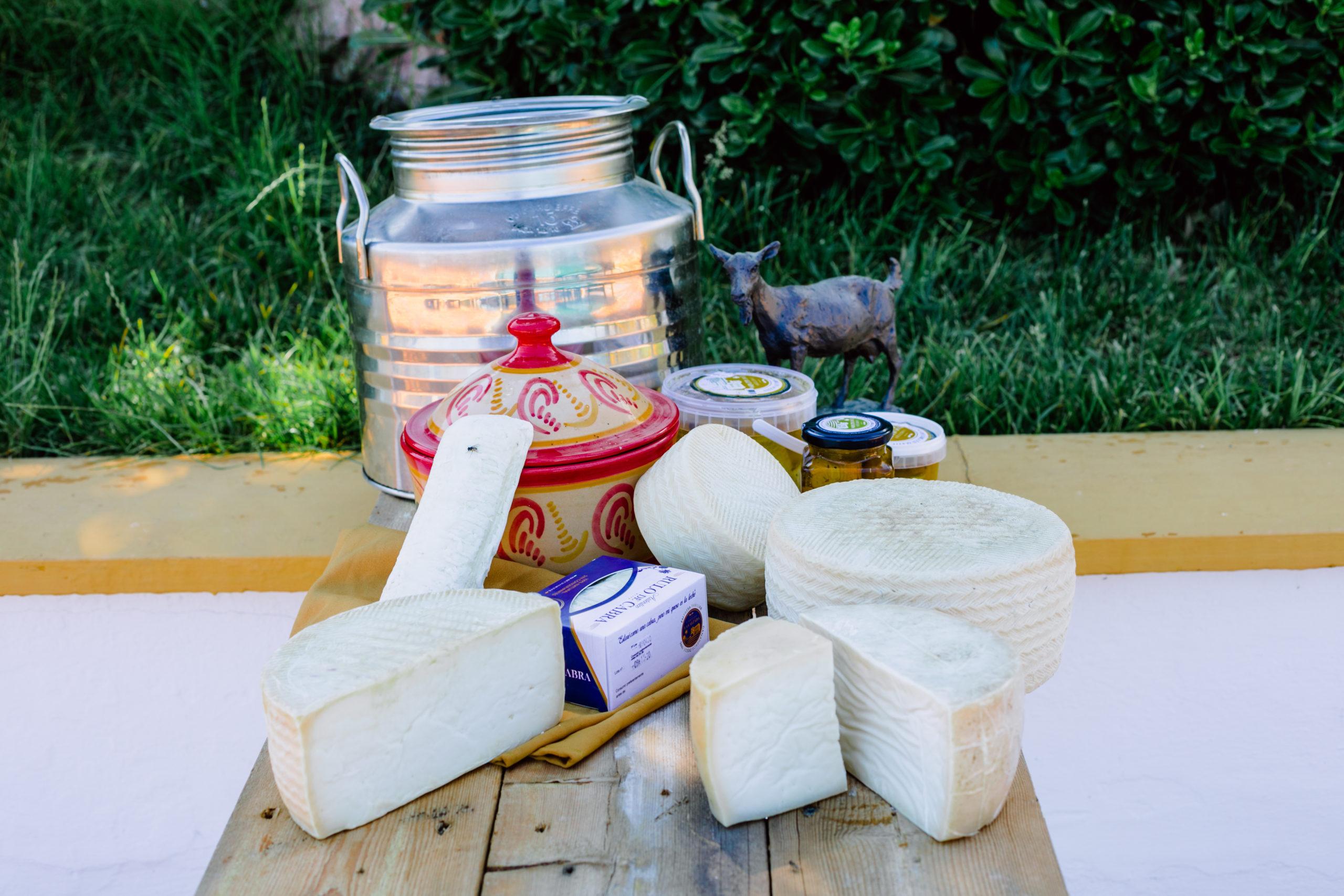 Doce recetas queso de cabra
